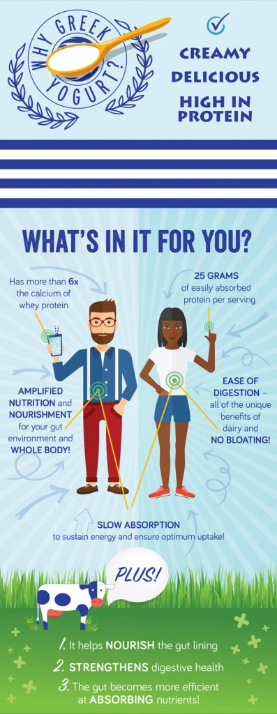 Infographic: fermented Greek yogurt proteins+